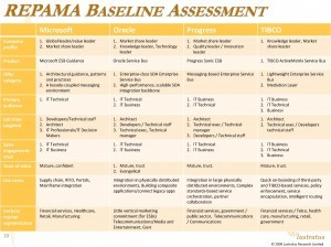 Example REPAMA Baseline Assessment